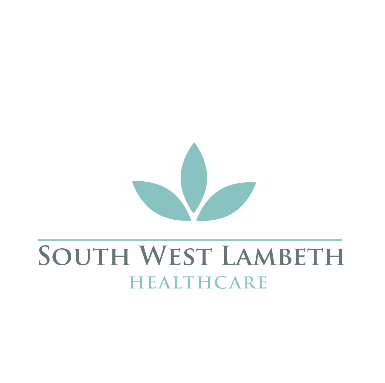 serious conservative healthcare logo design for south