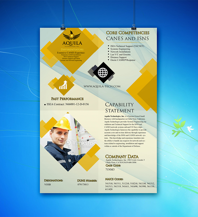 serious masculine business brochure design for aunautic