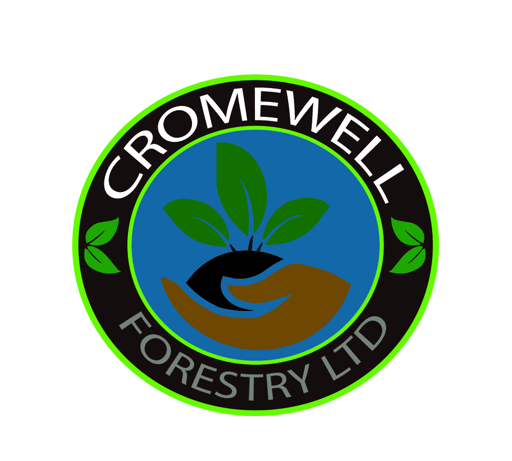 Professional, Masculine, It Company Logo Design for Cromwell
