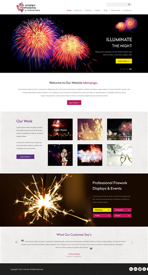 Web Design by pb - Display Fireworks needs a web design and logo