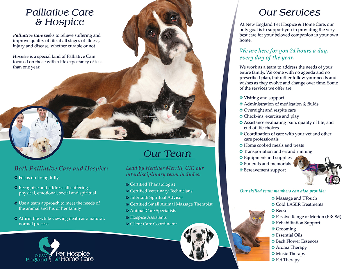 Serious upmarket flyer design for new england pet hospice inc flyer design by alewissigner19 for redesign company trifold brochure design 6490843 1betcityfo Image collections