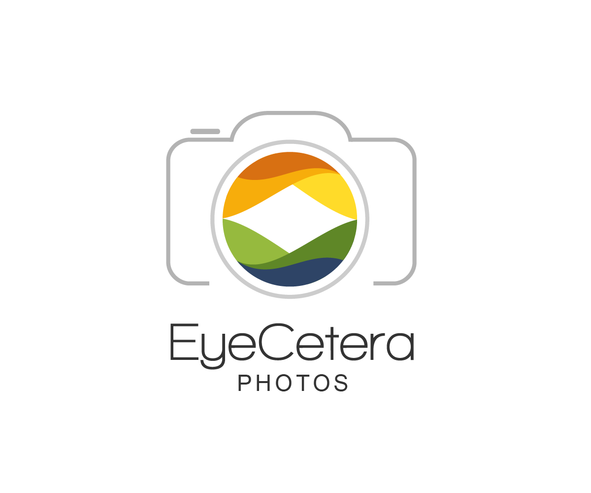 Modern Professional Logo Design For Eyecetera Photo By