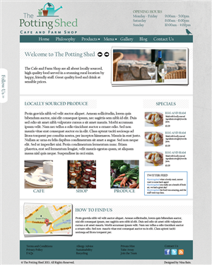 Web Design by Nina Bain - Website development