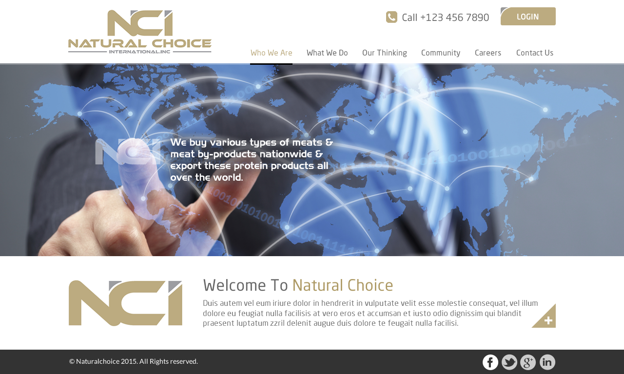 Elegant playful it company web design for natural choice for Decor products international inc