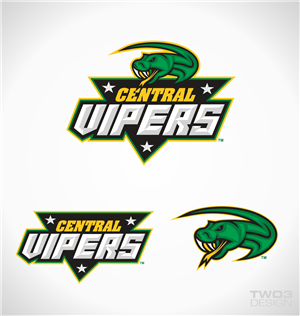 65 Bold Modern Logo Designs for Central Vipers a business in New ...