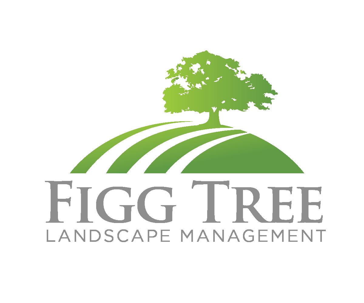 Elegant Playful Business Logo Design For Figg Tree Landscape