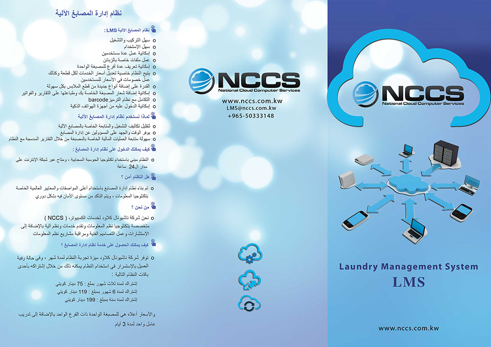 Serious, Conservative, It Company Flyer Design for a Company by