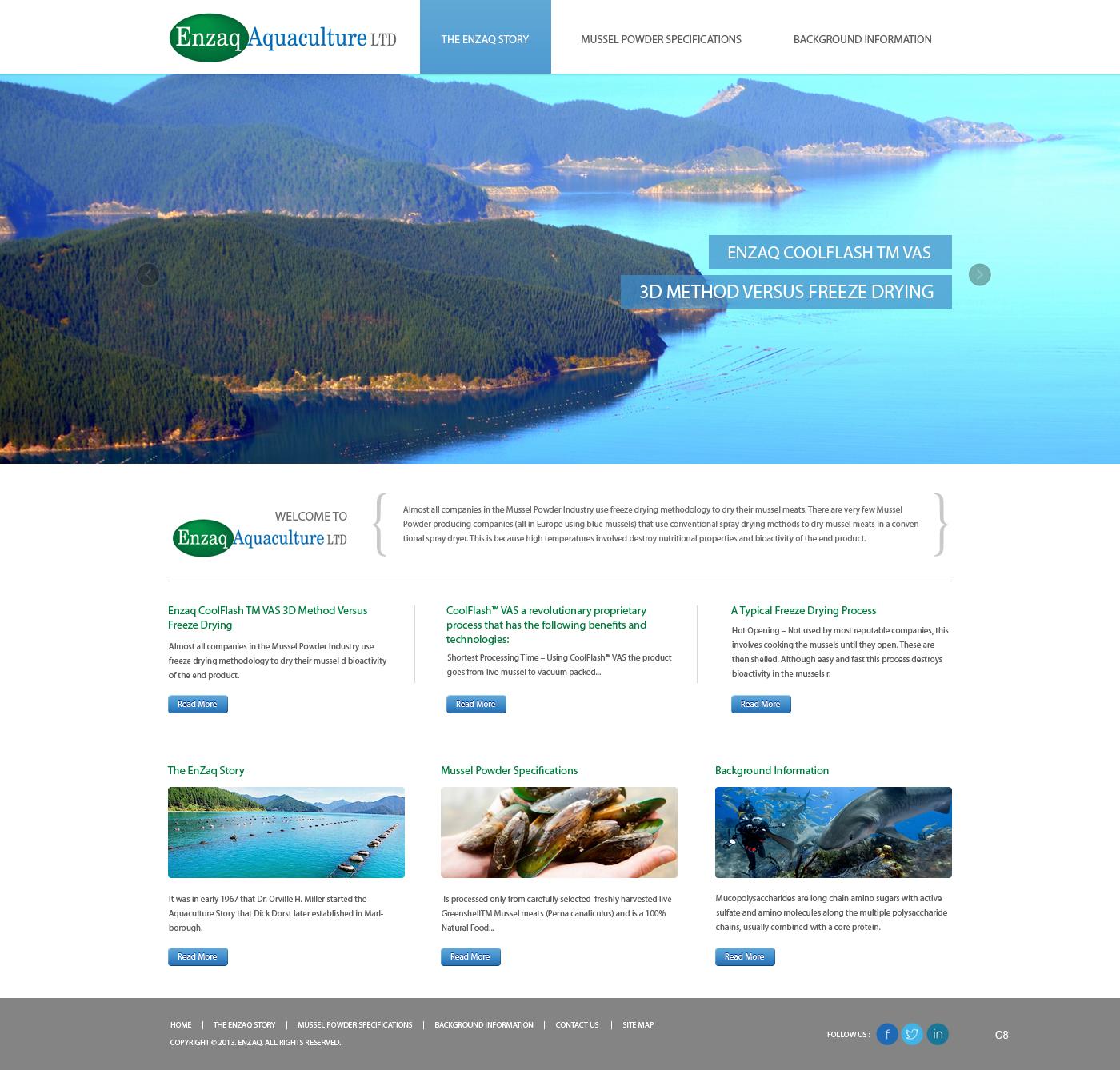 Professional, Upmarket, Pharmaceutical Web Design for Enzaq