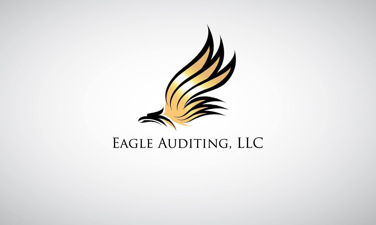 serious modern logo design for eagle auditing llc by