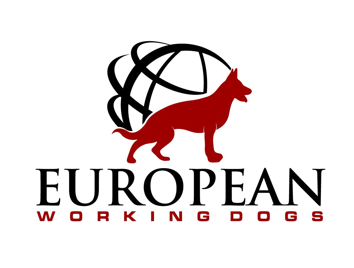 Feminine bold it company logo design for european for European design firms