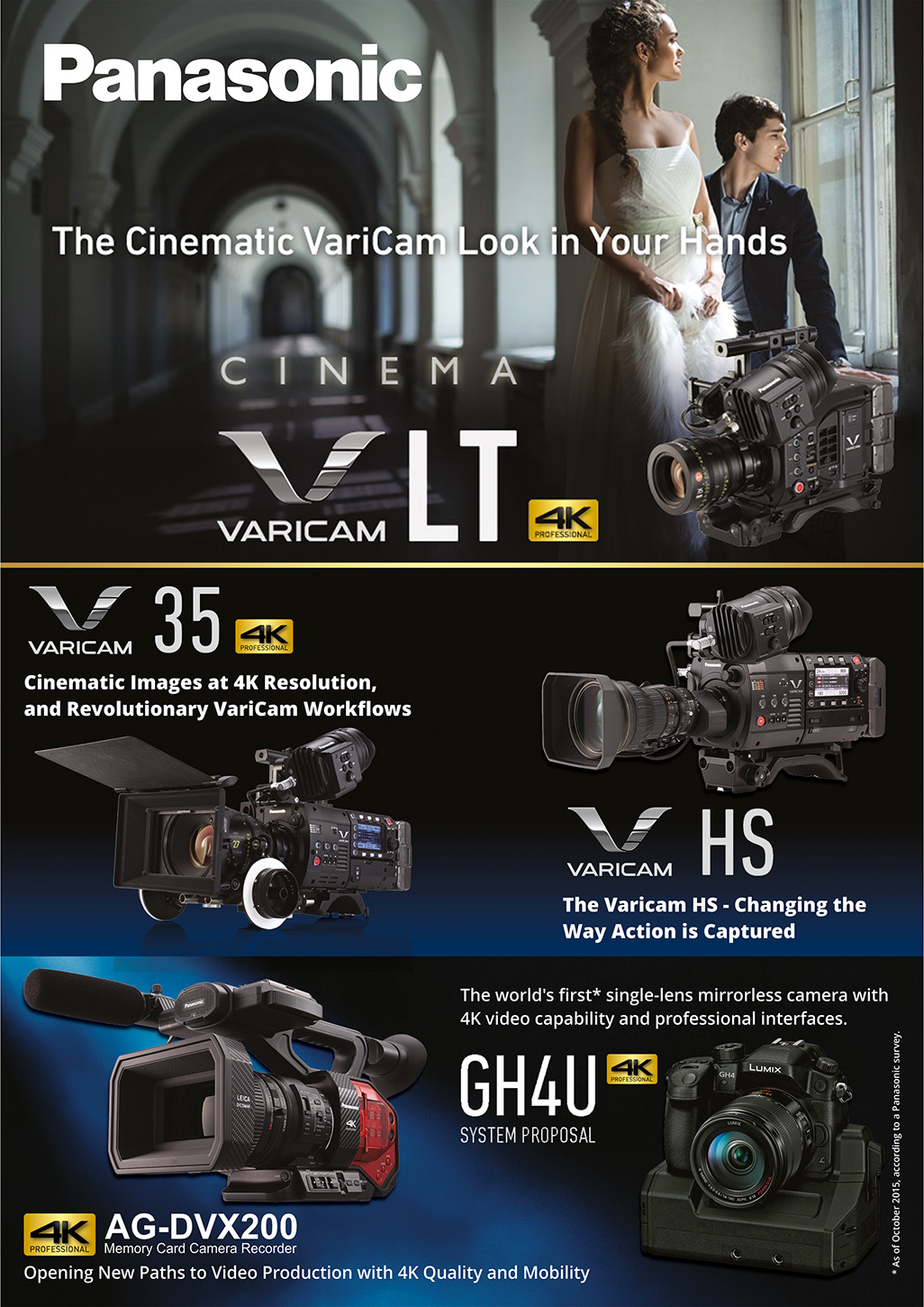Advertisement Design By ALSADESIGN For Pro Video Systems