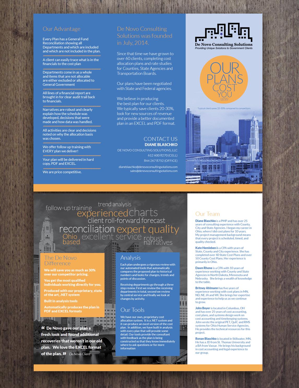 Bold, Colorful, Consulting Flyer Design for De Novo