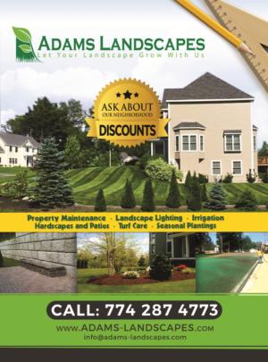 Professional Bold Landscaping Flyer Design For Adams Landscapes