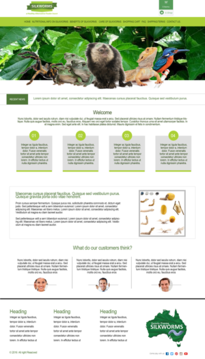 BigCommerce Design by MB Design India for Aussie Fauna | Design: #10438646
