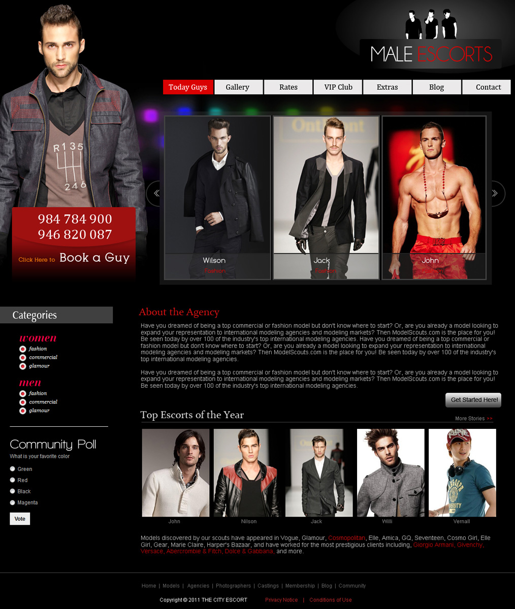 gay escort service website shemalewiki