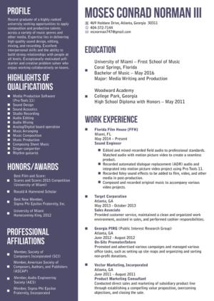 Resume Design Custom Resume Design Service