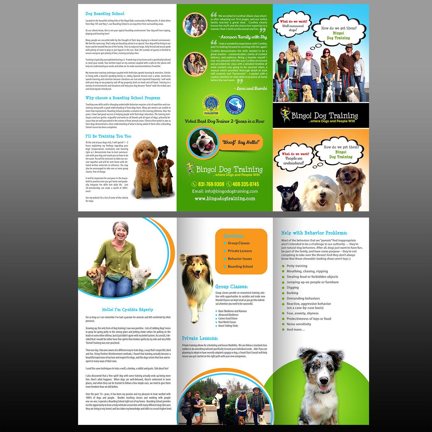 39 Colorful Flyer Designs School Flyer Design Project For Bingo