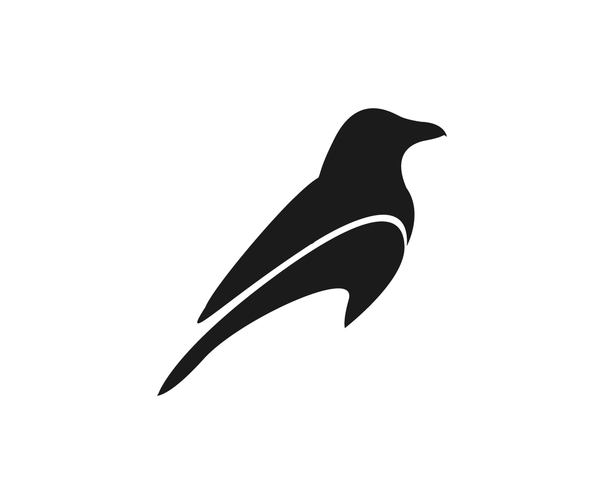 Dark crow logo