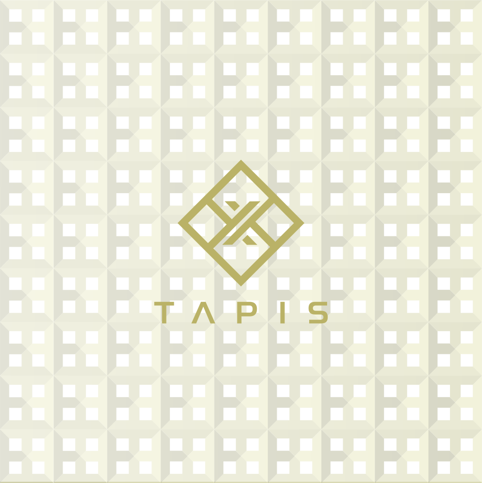 Modern Professional It Company Logo Design For Tapis By Dixie S