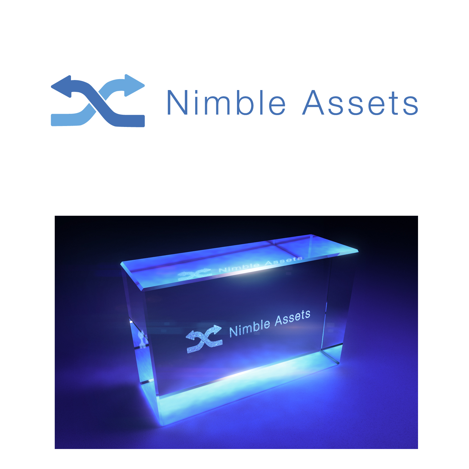 Modern, Serious, It Company Logo Design for Nimble Assets by
