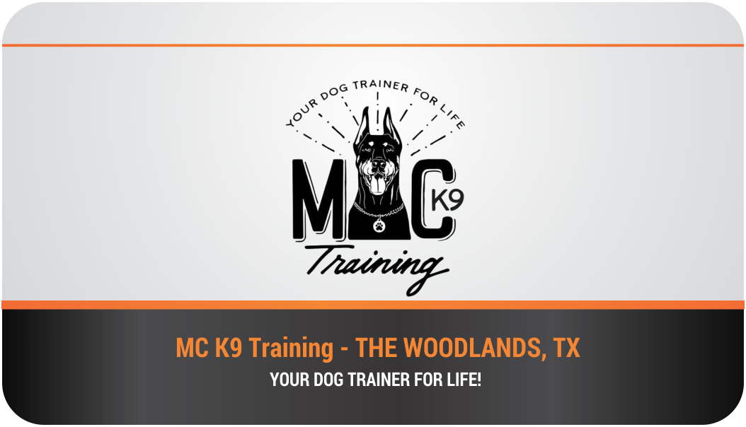 Serious modern dog training business card design for mc k9 business card design by himanshi10 for mc k9 training design 16329067 reheart Images