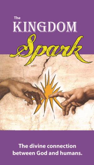 Religious Book Cover Design : Serious upmarket christian book cover design for a