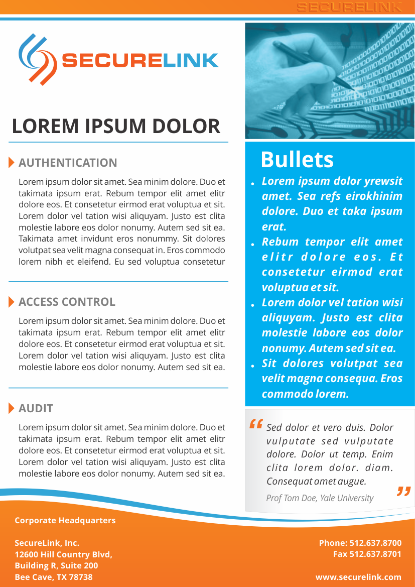 professional serious marketing brochure design for securelink inc