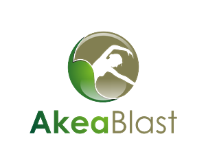 Logo Design job – AkeaBlast! - Logo and Marketing Materials Design Needed – Winning design by Pijar