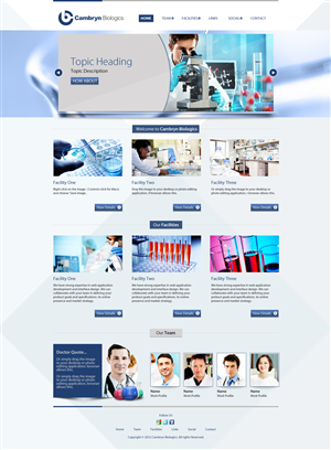 Wordpress Design #651668