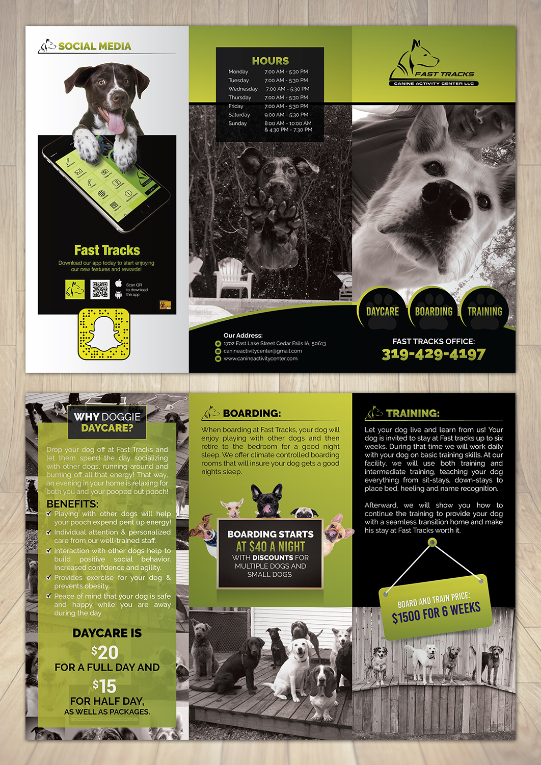 Bold, Serious, Pet Care Flyer Design for a Company by