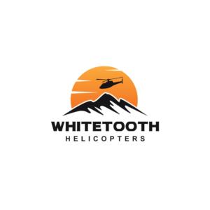 professional colorful logo design job logo brief for dirk de bie