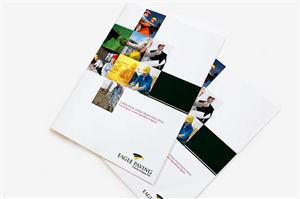 Brochure Design job – Brochure Design Project – Winning design by MW Soluciones Creativas
