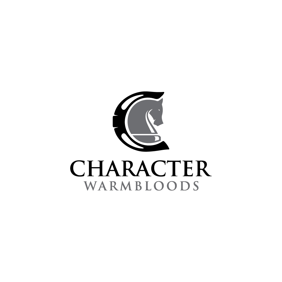 Character Design Logo : Serious modern business logo design for character
