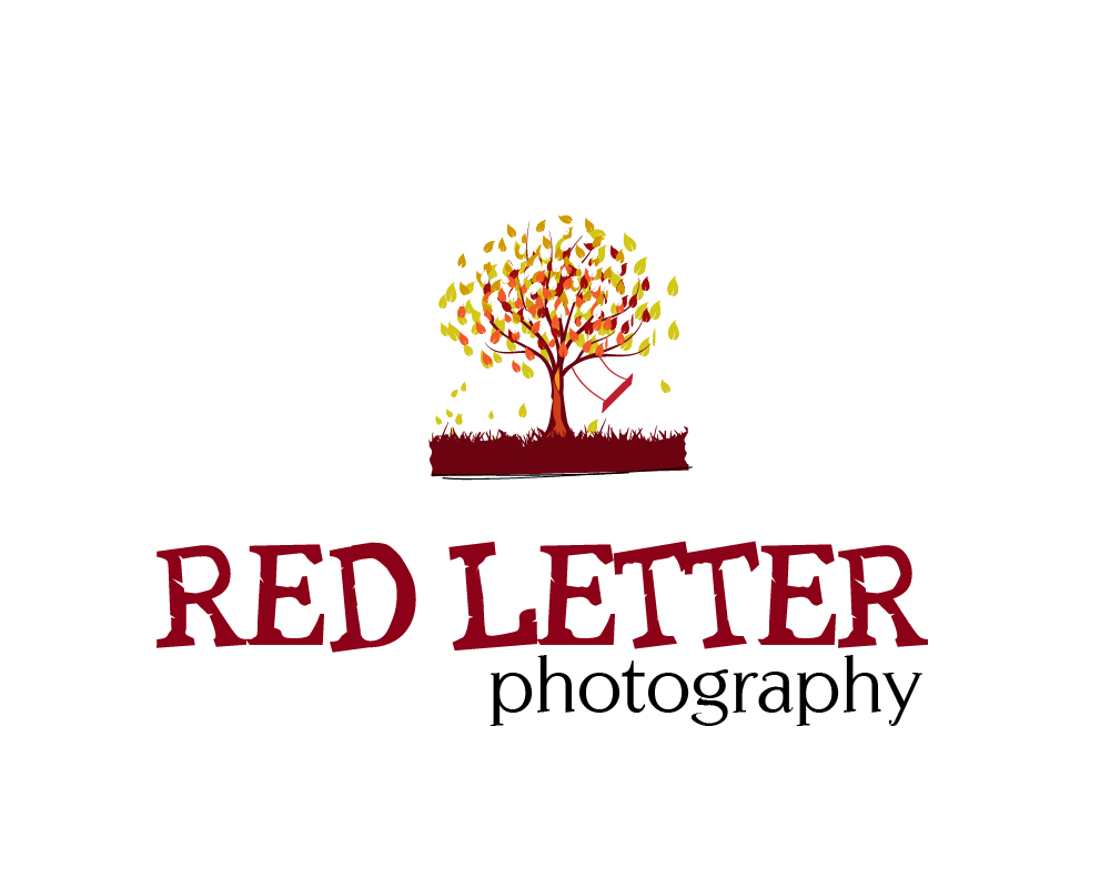Red Typography Swing and Tree Logo Design by briliana