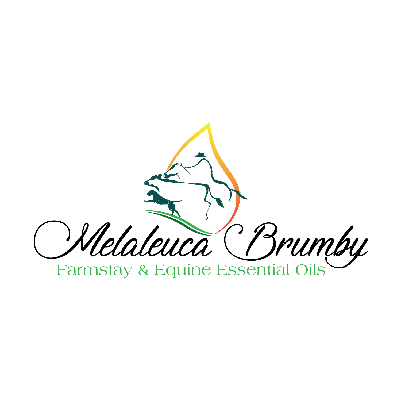 Business Logo Design for Melaleuca Brumby - Farmstay & Equine ...