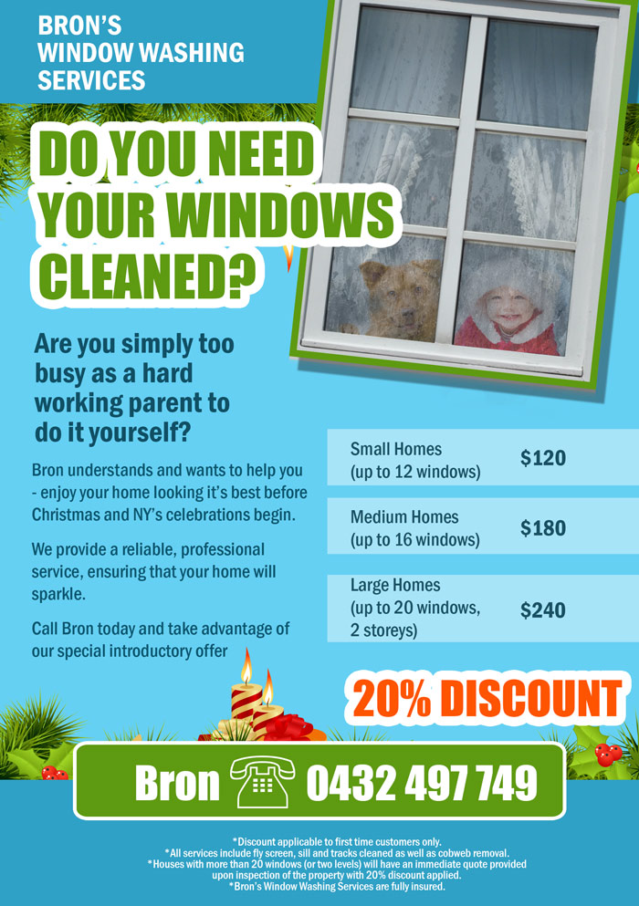 Window Cleaning Leaflet Flyer Design Contest Brief 328053
