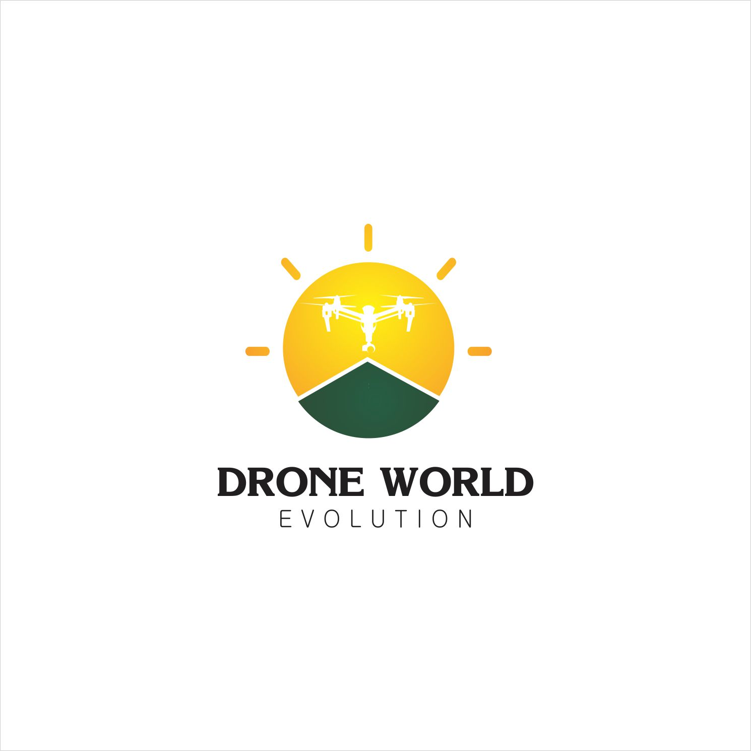 Elegant, Masculine Logo Design for Drone World Evolution