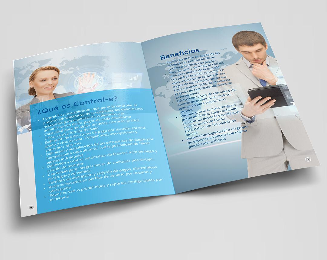 elegant serious business brochure design for global information