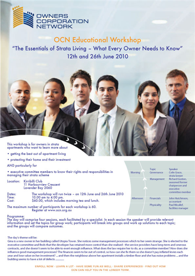 Flyer Design 2011 For Consultant 57049