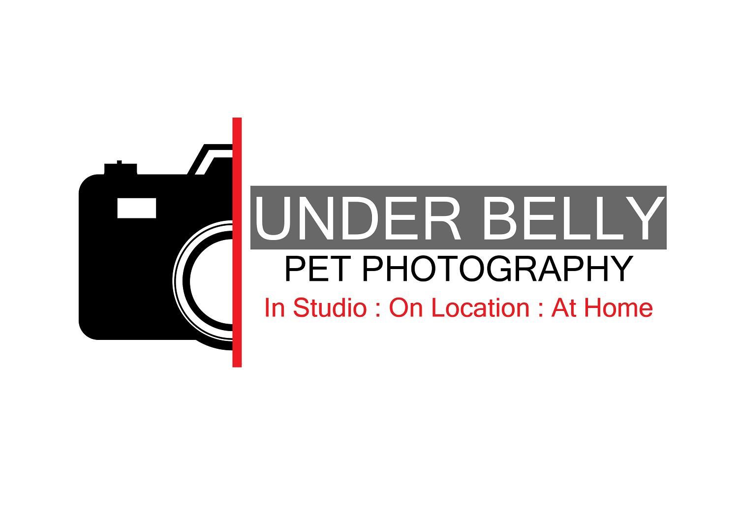 Elegant Serious Photographer Logo Design For Under Belly Pet Photography In Studio On Location At Home By Kusuma1922 Design 19853730