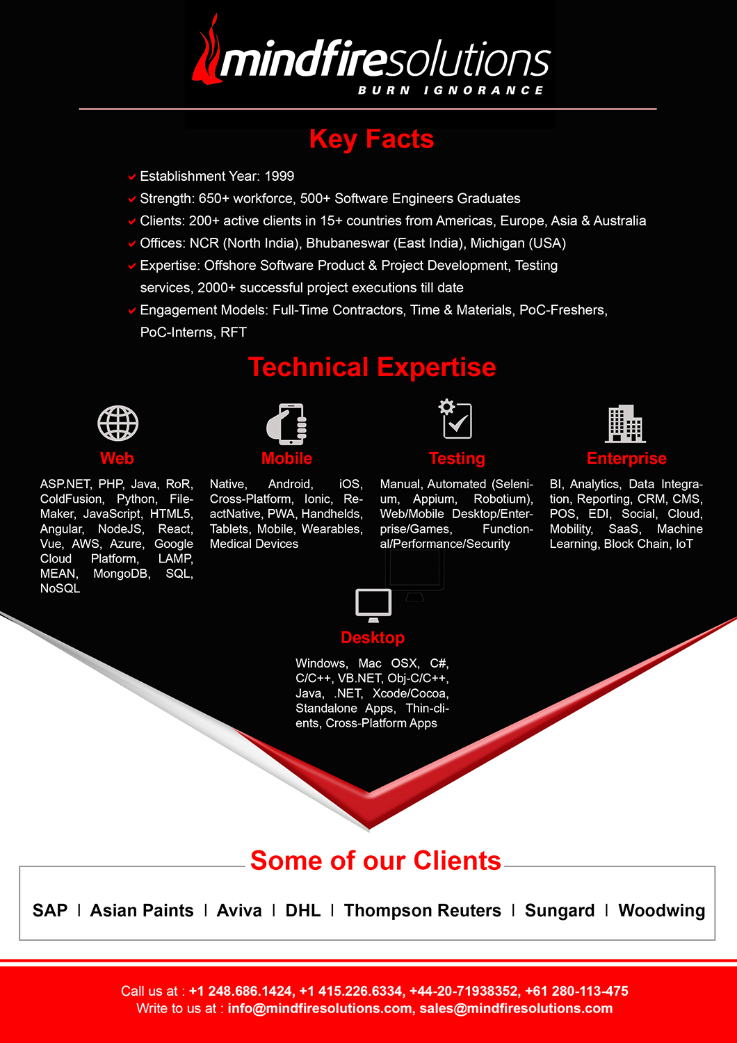 Professional, Conservative, Information Technology Flyer