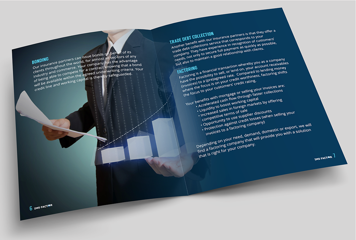 serious professional financial brochure design for a company by