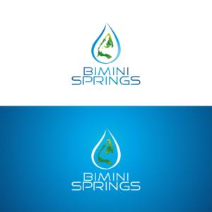 Bimini Springs  | Logo Design by Kreative Fingers