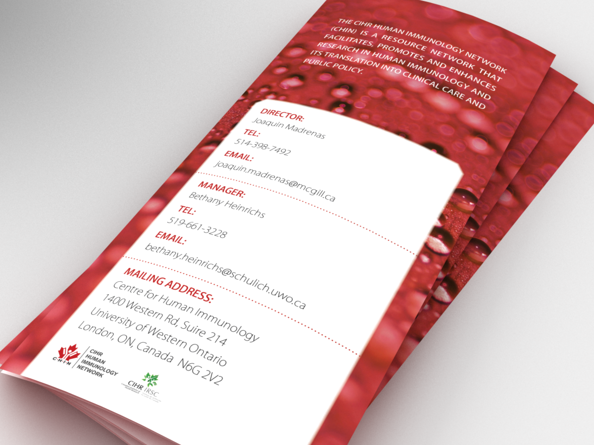 Bold, Modern, Communication Brochure Design for a Company by Bogi ...