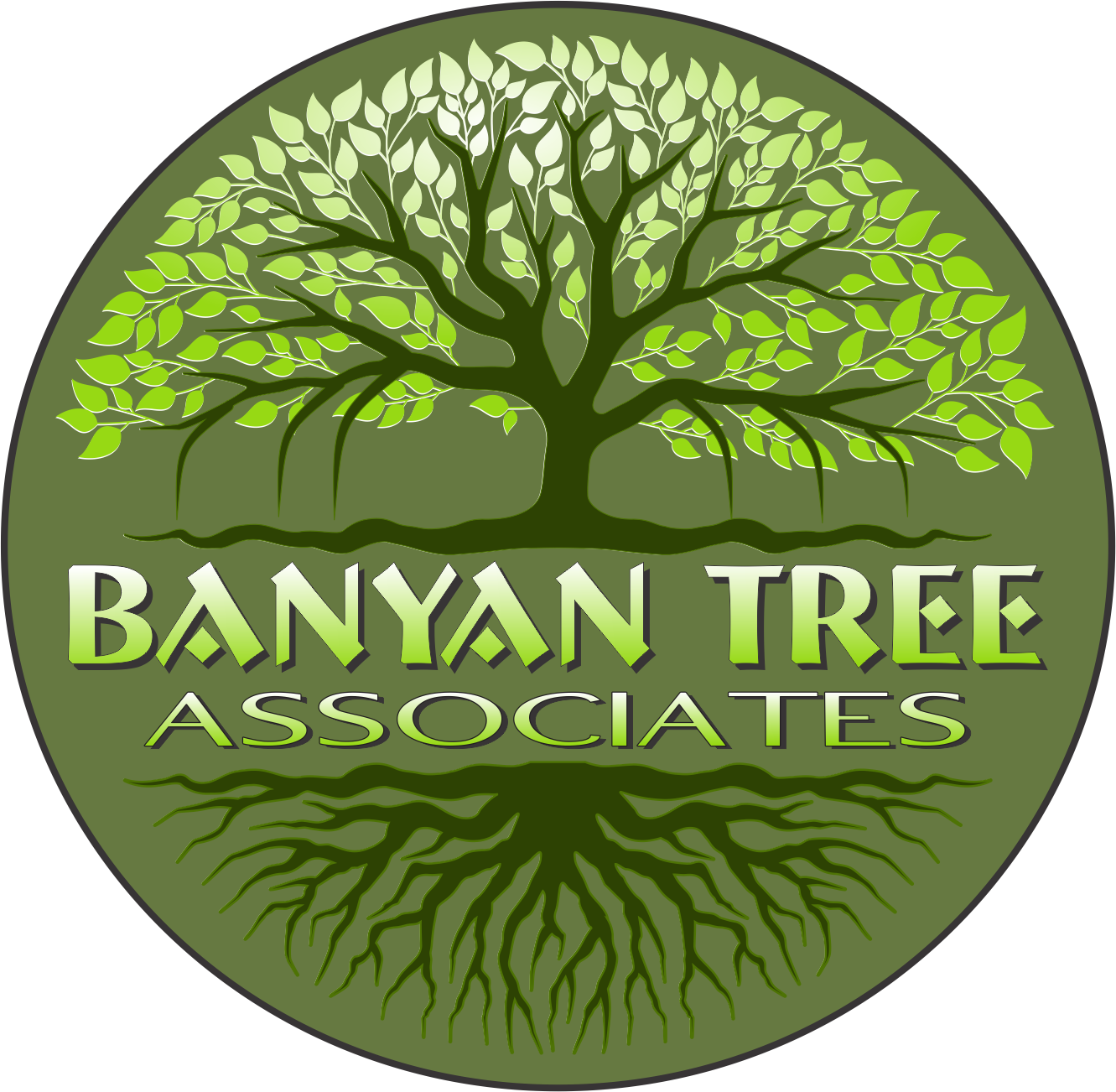 Serious Professional Business Consultant Logo Design For Banyan Tree Associates By Mt Marketing Design 23366833