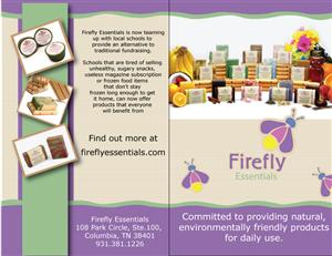 Brochure Design by TedAtkinson - Fundraiser Brochure