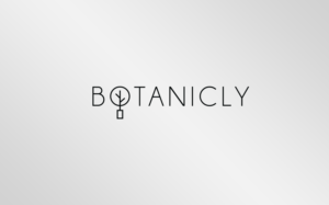 Botanicly | Logo Design by MT
