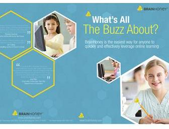 Yellow Crest Brochure Design 69898