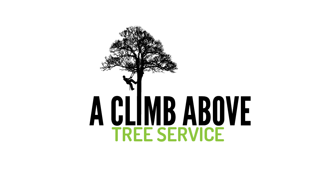 Serious Masculine Logo Design For A Climb Above Tree