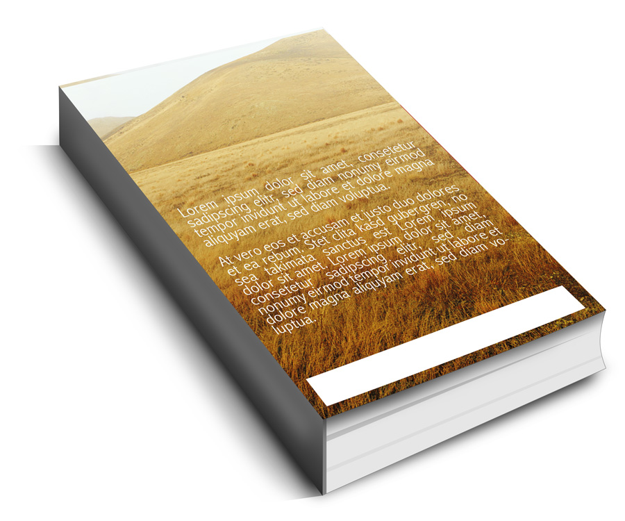 Landscape Book Cover Design : Landscape book cover design for a company by isabel paoli